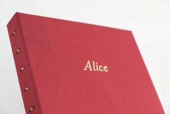 http://helenegenvrin.com/files/gimgs/th-21_album-naissance-Alice-4.jpg